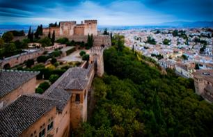 Guided Tour of the Alhambra and Admission to the Science Park