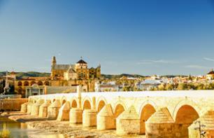Guided Excursion to the Historic City of Cordoba