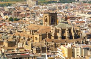 Guided Walking Tour of the Historic Centre of Granada and the Albaicin