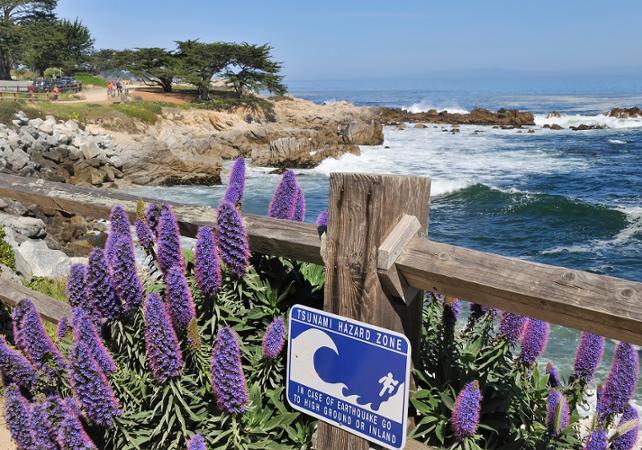 Excursion d'une journée le long de la côte Pacifique et visite de Monterey et Carmel - Au départ de San Francisco - San Francisco -
