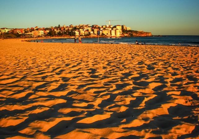 Visite guidée de Sydney et de Bondi Beach - Tour en minibus et à pied image 4
