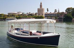 Electric Boat Cruise on the Guadalquivir in Seville – Drink optional