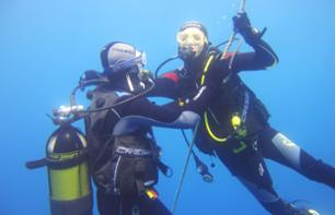Diving Trip: Underwater Exploration in the Gulf of Saint-Tropez