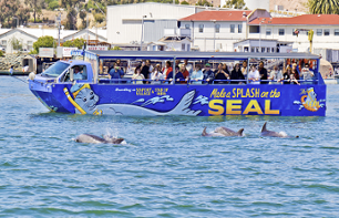 Quirky Amphibious Adventure: Tour San Diego by Land and Sea!