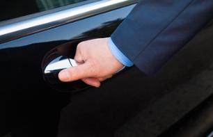 Transfer by private vehicle from Monaco to Eze, Menton, Monaco or La Turbie during the day.