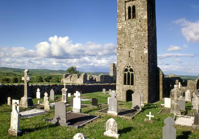 Excursion dans la vallée de la Boyne : vestiges et légendes celtiques image 3