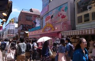 Shopping Tour in the Districts of Shinjuku, Shibuya and Roppongi – With personal guide