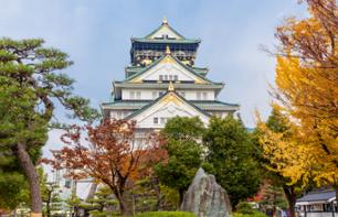 Guided Tour of Osaka and Cruise on the Okawa River