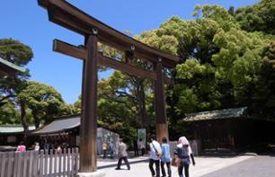 Tour of Traditional and Imperial Tokyo – With personal guide