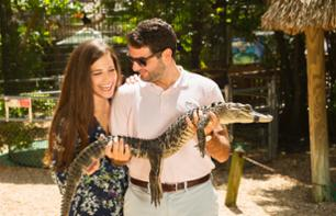 Alligator Watching and Cruise to Explore Fort Lauderdale – 3 hours