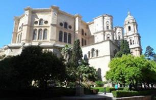 Guided Visit to Malaga with Skip-the-line Ticket to the Picasso Museum - Optional Tapas and Lunch