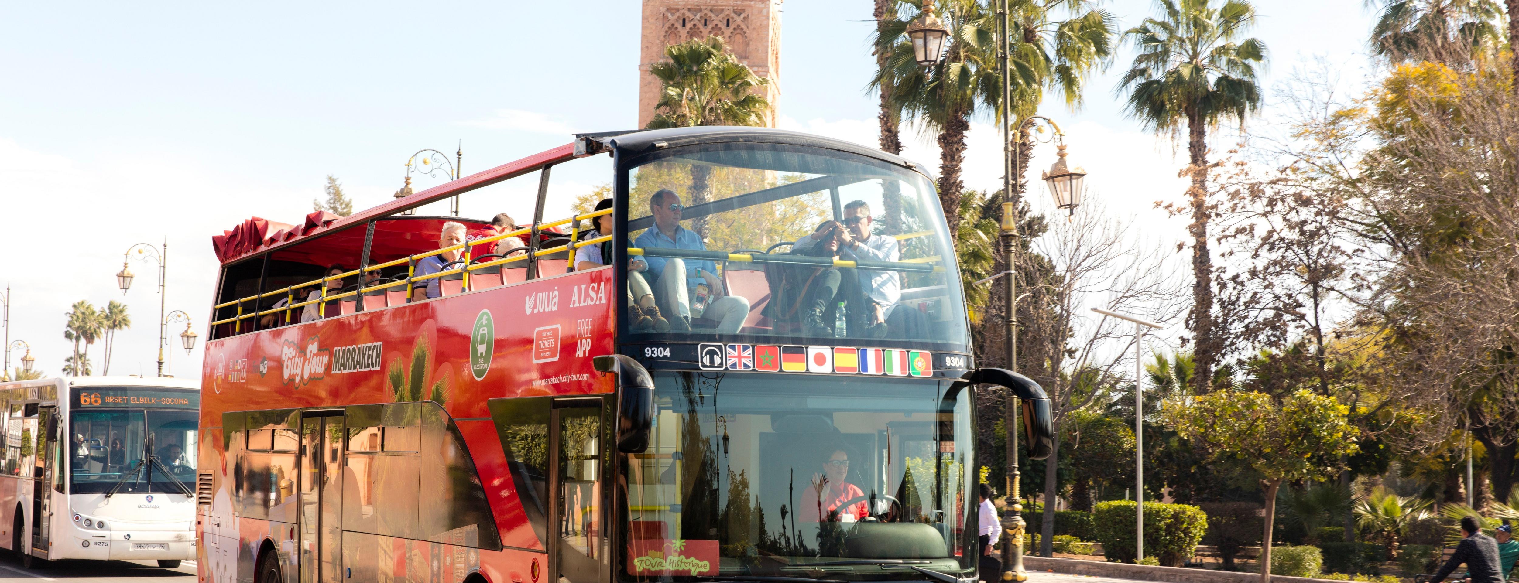 ,Paseo en camello,Palmeral de Marrakech