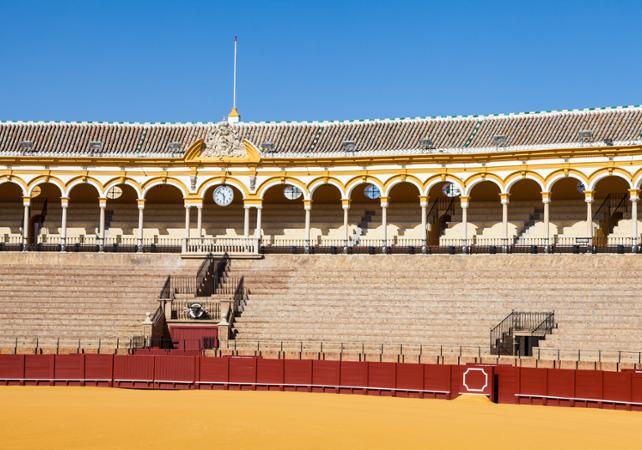 Visite de Séville en minibus et visite guidée des arènes de la Real Maestranza - Séville -