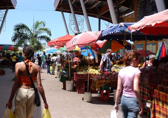 Excursion d'une journée dans le Sud de la Basse Terre et aux chutes du Carbet - La Guadeloupe et ses sites touristiques -