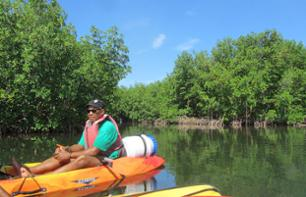 Stories & Legends Themed Kayak Excursion in The Guadeloupean Mangroves