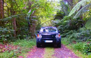 4x4 Excursion to See Northern Martinique - Depart from Trois-Îlets and its Surroundings