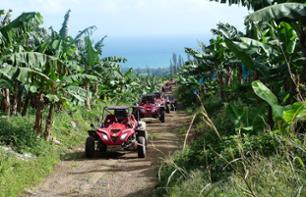 Buggy Tour of Northern Martinique - Departure from Basse-Pointe