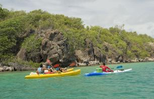 Sea Kayak Tour of Martinique's Southern Coast - Departure from Sainte-Anne