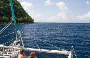 Catamaran Cruise of Martinique's Southern Coast (Route des Anses) - Departure from Trois-Îlets