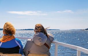 The best of Finland: cruise on the archipelago, walk around an island and a Finnish gourmet dinner