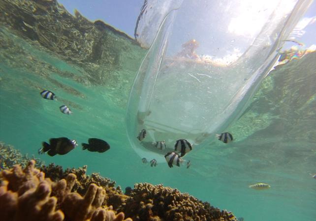 Location de kayak transparent à La Réunion - La Réunion et ses sites touristiques -