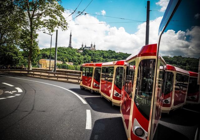 ,Lyon City Pass