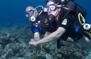 Diving Baptism in the Heart of the Cousteau Marine Park – Departing from Basse-Terre, Guadeloupe
