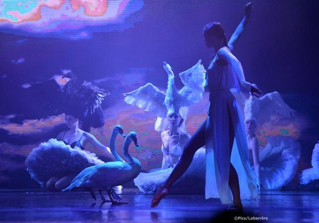 Tickets, museos, atracciones,Tickets, museums, attractions,Entradas a atracciones principales,Major attractions tickets,Teatro, shows y musicales,Theater, shows and musicals,Moulin Rouge,Show