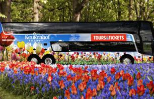 Visit the Tulip Gardens at Amsterdam's Keukenhof Park - Transport from Amsterdam included