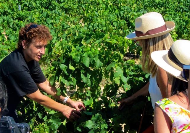 Soirée découverte des vignobles catalans et des pyramides humaines - depuis Barcelone - Barcelone -