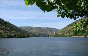 1 Day Douro River Cruise to Pinhão – Leaving from Porto