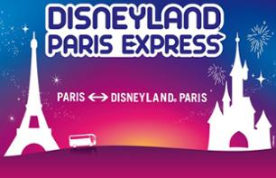 Return Shuttle and Ticket to Disneyland® Paris: 1 Day/1 Park-