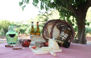 Brunch in a Vineyard - 45 minutes from Tarragona and 2 Hours from Barcelona