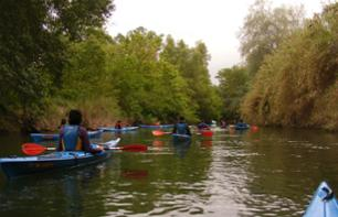 Canoe Trip Through the Vineyards - 45 min from Tarragona and 2 hours from Barcelona