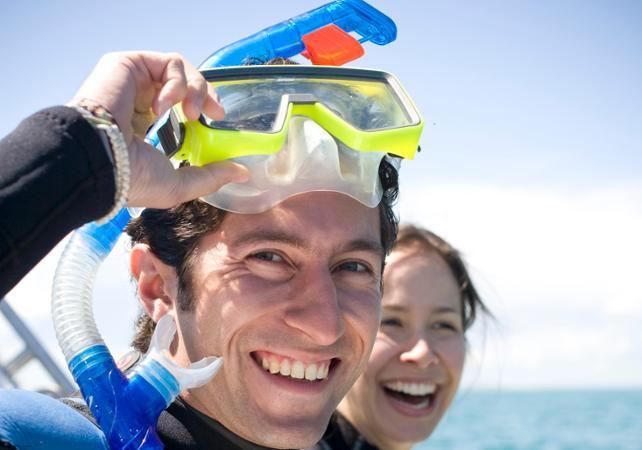 Nage avec les dauphins et les phoques sauvages dans la baie de Port Phillip – Départ depuis Sorrento image 3