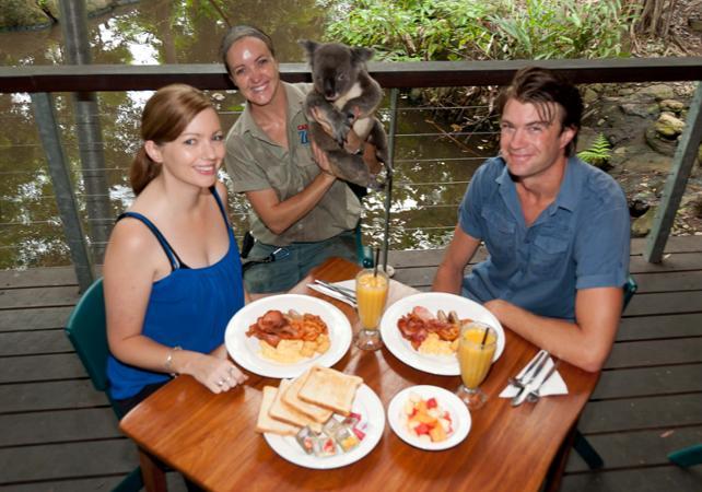 Petit déjeuner avec les Koalas + Visite guidée du WILD LIFE Sydney Zoo - Billet coupe-file image 2
