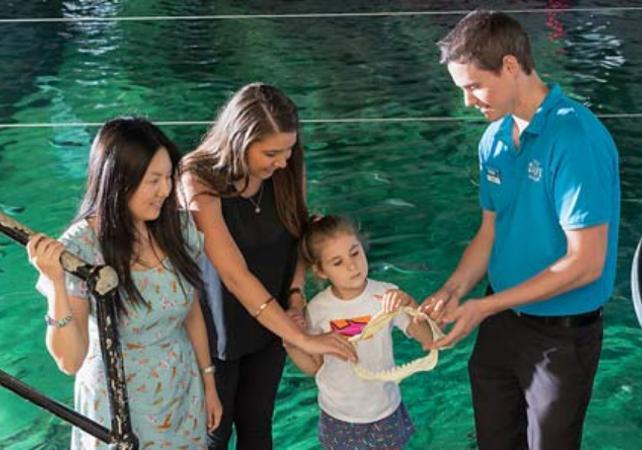 Visite guidée de l'aquarium SEA LIFE de Sydney - Avec tour des coulisses et nutrition des animaux image 1