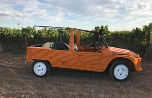 Off-road Vehicle Tour of Vineyards with Cellar Visit and Wine Tasting - Lunch Optional - 1 hour from Barcelona