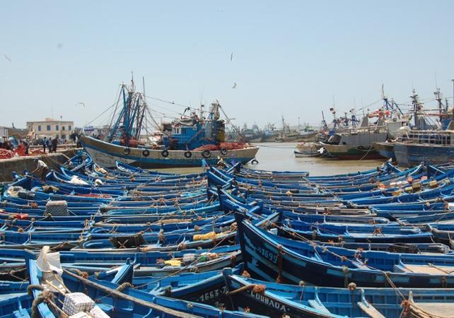 ,Excursion to Essaouira
