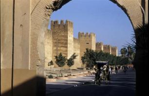 Private Excursion to Taroudant – Half-Day Trip Leaving from Agadir