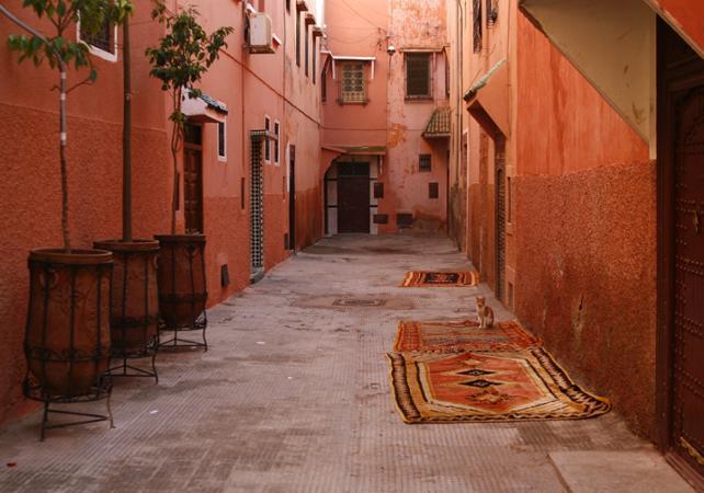 Tour historique de Marrakech - Départ/retour hôtel - Marrakech -