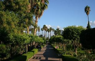 Private Visit the Gardens & Walls of Marrakech