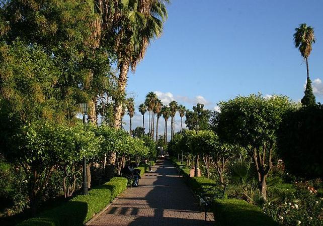 Visite des Jardins de Marrakech et de ses remparts - Marrakech - Ceetiz