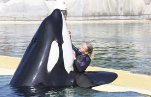 Fast-track Marineland ticket - Antibes