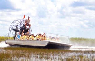 Tour the Everglades by Airboat & Meet the Alligators – Departing from Miami