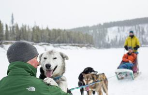 7 Days/6 Nights in the Shoes of a Sled Dog Trainer – Departing from Whitehorse