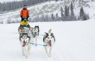 Dog Sledding in the Heart of the Yukon – Departing from Whitehorse
