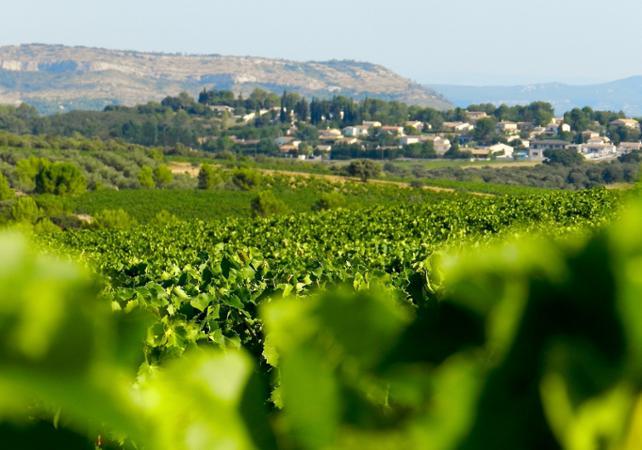 Demi-journée dans les vignobles du Languedoc et dégustations - Montpellier -