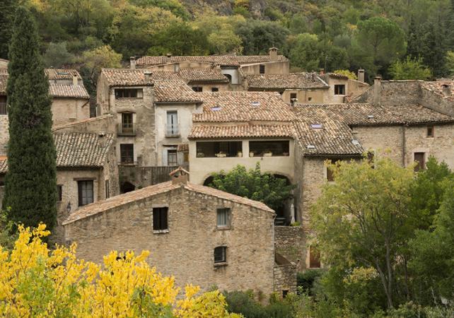 Journée découverte du Languedoc : vignobles, village médiéval et gorges de l'Hérault - Montpellier -