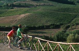 Bike Ride in the Chianti Region – Leaving from Florence